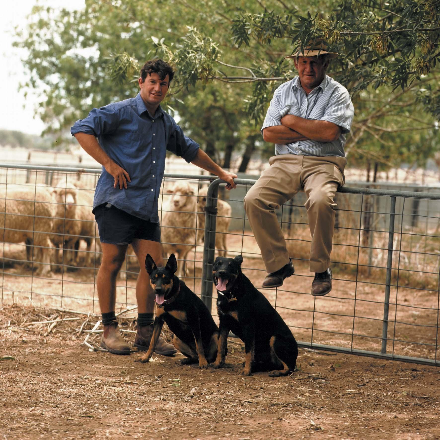 Homepage - Marabou Kelpie Working Dogs